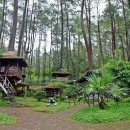 Tempat Wisata Outbound Murah di Bandung